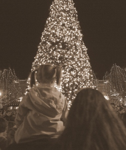 tree lighting c. 2012, EE