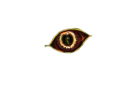 dragon eye example